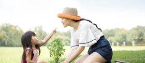 Bạn hiểu gì về quy trình chi trả quyền lợi bảo hiểm nhân thọ?
