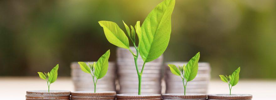 Đầu tư gì với số tiền nhỏ để mang về lợi ích nhiều nhất