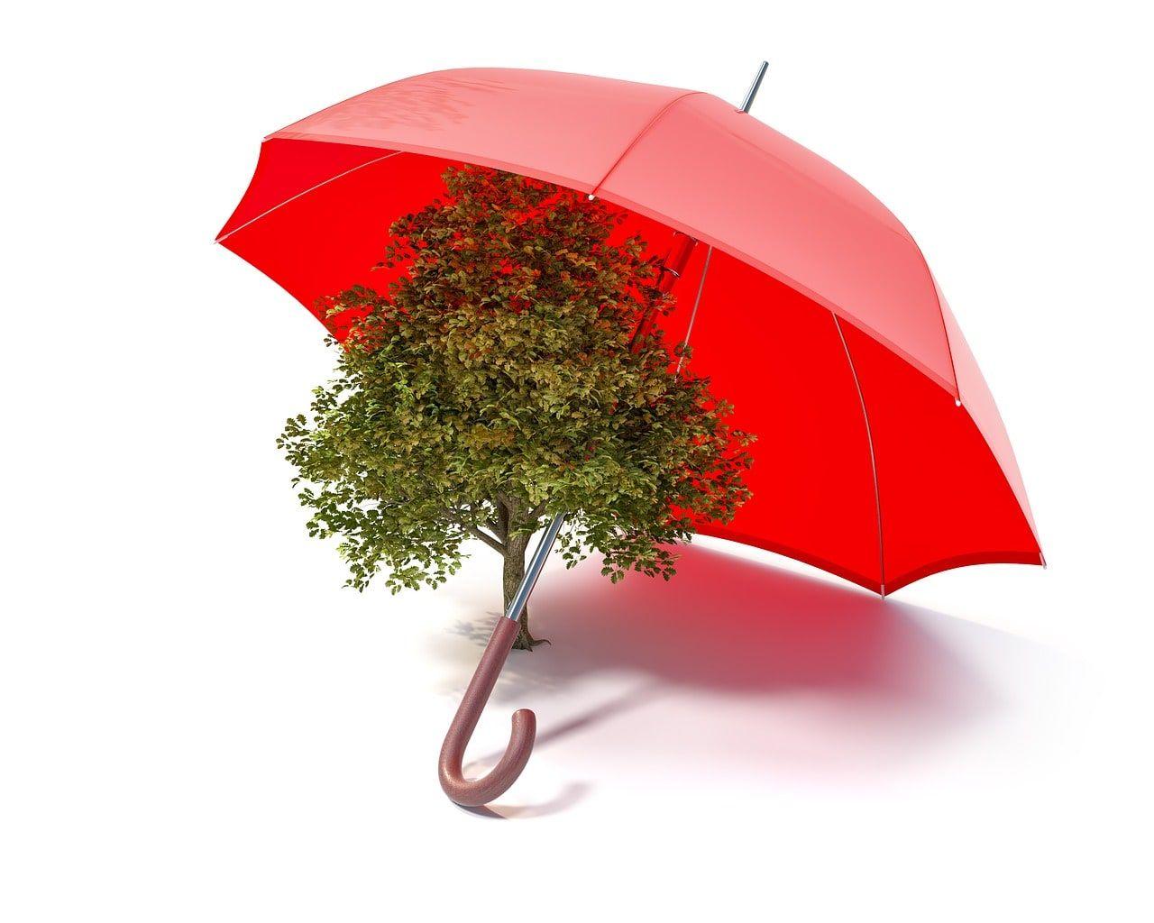 Phải hiểm về sản phẩm bảo hiểm nhân thọ bạn sắp mua
